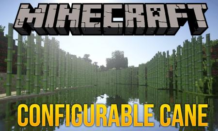 Скачать Configurable Cane для Minecraft 1.12