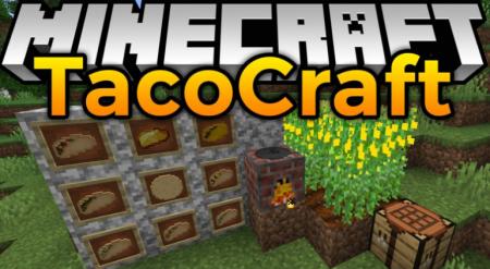 Скачать TacoCraft для Minecraft 1.16