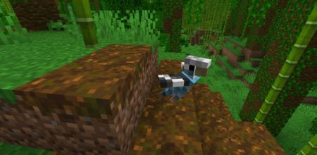 Скачать The Parakeet для Minecraft 1.16.2