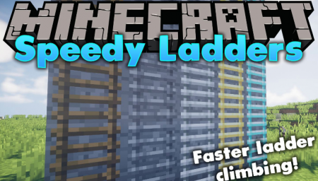 Скачать Speedy Ladders для Minecraft 1.16.3