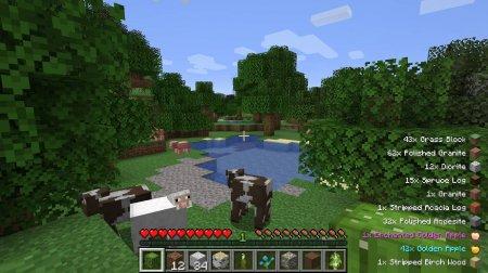 Скачать Pick Up Notifier для Minecraft 1.16