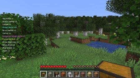 Скачать Pick Up Notifier для Minecraft 1.16.3