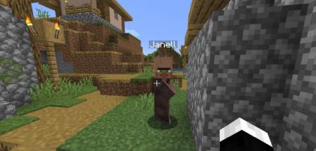 Скачать Villager Names для Minecraft 1.16.2