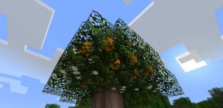 Скачать Fruit Trees для Minecraft 1.16.1