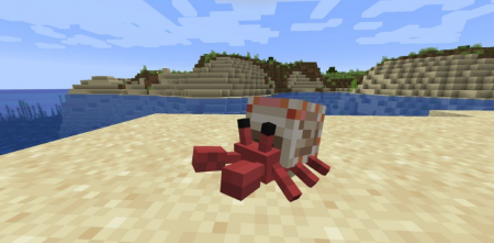 Скачать Cute Hermit Crabs для Minecraft 1.16