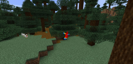 Скачать Identity для Minecraft 1.16.3