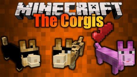 Скачать The Corgis для Minecraft 1.16