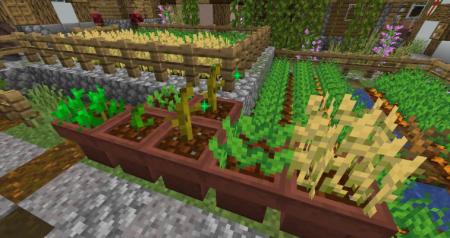 Скачать Supplementaries для Minecraft 1.16.4