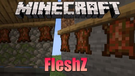Скачать FleshZ для Minecraft 1.16.4