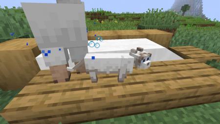 Скачать Milky для Minecraft 1.14