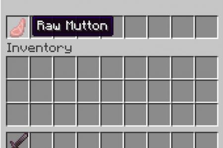 Скачать RpgZ для Minecraft 1.16.3