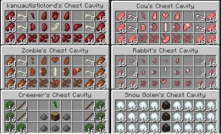 Скачать Chest Cavity для Minecraft 1.16.3