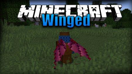Скачать Winged для Minecraft 1.16.4