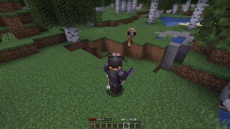 Скачать Player Ex для Minecraft 1.16.3
