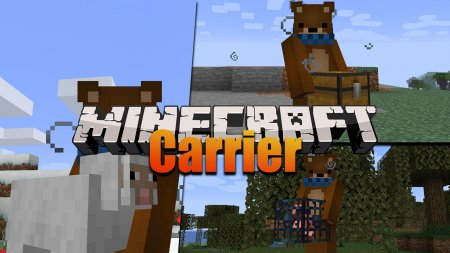 Скачать Carrier для Minecraft 1.16.5