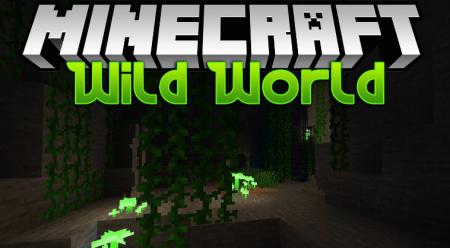 Скачать Wild World для Minecraft 1.16.4