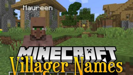 Скачать Villager Names для Minecraft 1.16.4