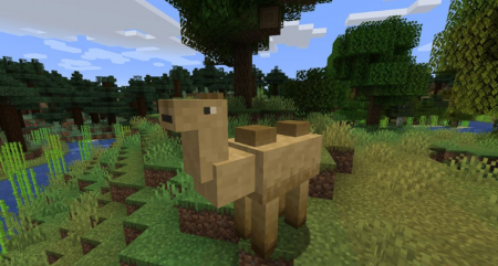 Скачать Camels для Minecraft 1.16.5