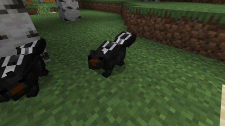 Скачать Skunks для Minecraft 1.16.2