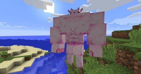Скачать Buffxolotl для Minecraft 1.12