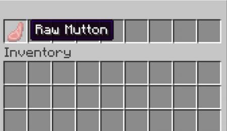 Скачать RpgZ для Minecraft 1.16