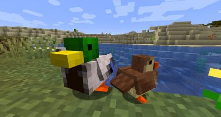 Скачать Untitled Duck для Minecraft 1.16.4