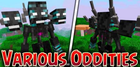 Скачать Various Oddities для Minecraft 1.16.4