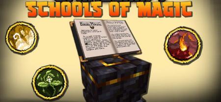Скачать Schools of Magic для Minecraft 1.16.1
