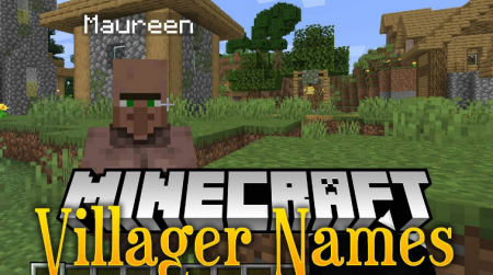 Скачать Villager Names для Minecraft 1.17