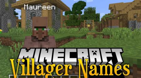 Скачать Villager Names для Minecraft 1.17.1
