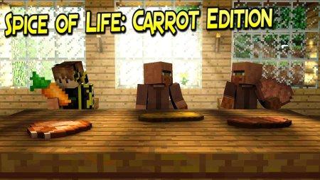 Скачать Spice of Life Carrot Edition для Minecraft 1.17.1
